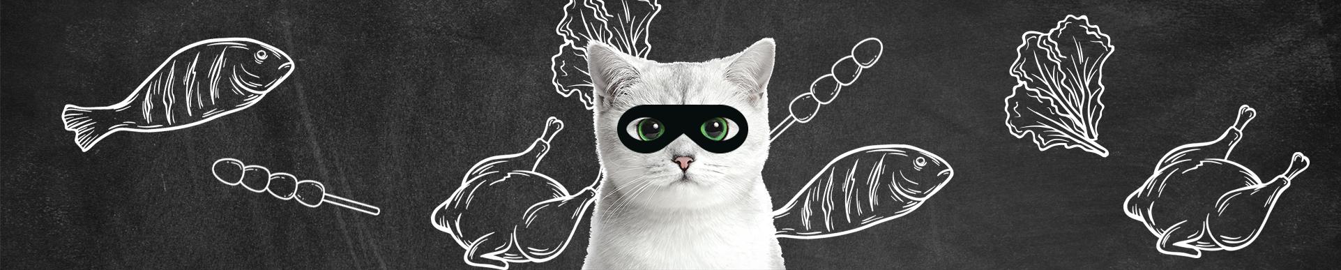 chat voleur